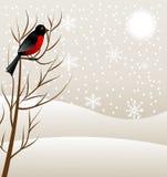 Vinterlandskap med en fågeldomherre stock illustrationer