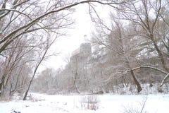 Vinterlandskap med ett forntida torn Royaltyfria Bilder
