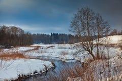 Vinterlandskap med floden Royaltyfri Bild