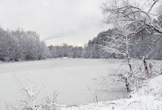 Vinterlandskap med floden Royaltyfri Fotografi