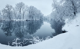 Vinterlandskap med floden i skog Royaltyfri Fotografi