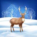 Vinterlandskap med hjortar Royaltyfria Bilder