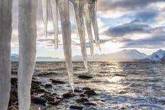 Vinterlandskap med istappar på förgrund arkivfoton