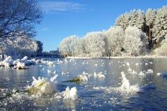 Vinterlandskap med skogen och träd winterly morgon av en ny dag med mycket snö royaltyfria foton