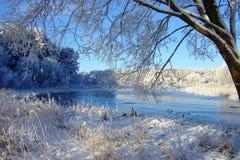 Vinterlandskap med skogen och träd winterly morgon av en ny dag med mycket snö arkivfoton