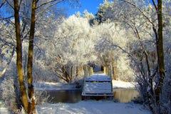 Vinterlandskap med skogen och träd winterly morgon av en ny dag med mycket snö royaltyfria bilder
