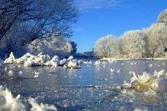 Vinterlandskap med skogen och träd winterly morgon av en ny dag med mycket snö royaltyfri fotografi