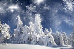 Vinterlandskap med snöig granträd Royaltyfri Bild
