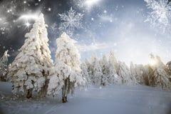 Vinterlandskap med snöig granträd Royaltyfri Foto