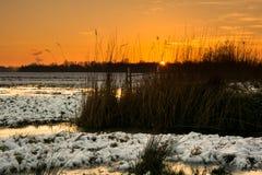 Vinterlandskap med solnedgång Arkivfoto