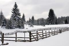 Vinterlandskap med trästaketet Arkivbilder