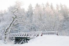 Vinterlandskap. Sagaskog, bro, snöig träd Arkivfoton