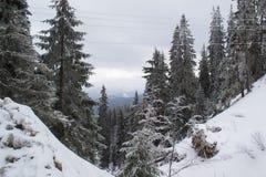Vinterlandskap som är högt i bergen royaltyfri foto
