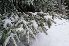 Vinterlandskap som är högt i bergen royaltyfria foton