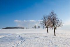 Vinterlandskap under blå himmel Royaltyfri Foto
