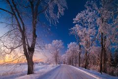 Vinterlandskap, väg, snö-täckte träd Mycket härlig tid nn Arkivbild