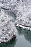 Vinterlandskapdrev royaltyfri bild