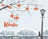 Vinterlandskapet med snö-täckte träd parkerar in vektor illustrationer