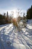 Vinterlandskapet med vägen med den färgrika linsen blossar Royaltyfri Fotografi