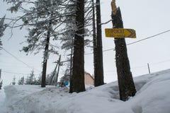Vinterlandskapet som är högt i bergen, skidar hyra fotografering för bildbyråer