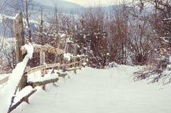 Vinterlandskapkura ihop sig trästaketet i vinterberg in Royaltyfri Bild