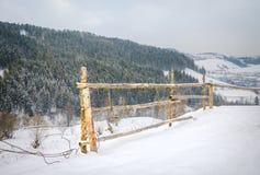 Vinterlandskapkura ihop sig trästaketet i vinterberg in Arkivfoton