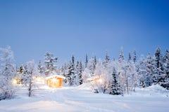 Vinterlandskapnatt arkivbild