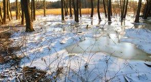 Vinterlandskappanorama arkivbild