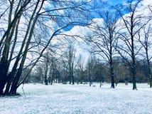 Vinterlandskapplats i en våtmarkmitt Fotografering för Bildbyråer