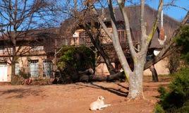 Vinterlantgårdhus royaltyfria foton