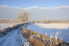 Vinterlantgården spårar Royaltyfri Fotografi