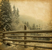 Vinterliggande Arkivfoton