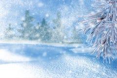 Vinterliggande med snow gran för bakgrundsfilialjul arkivfoton
