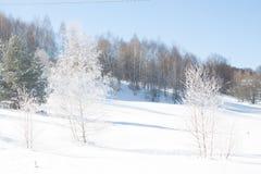 Vinterliggande med snow härlig liggandesnowvinter Arkivbild