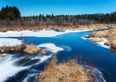 Vinterliten vik Royaltyfria Bilder