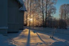 Vinterljus Royaltyfria Foton