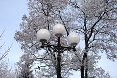 Vinterlykta Royaltyfria Bilder