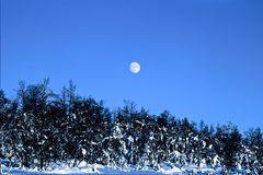 Vintermåne arkivfoton