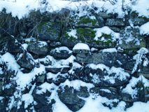 vintermiljö Royaltyfri Bild