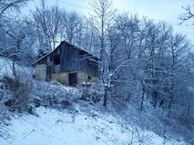 vintermiljö Royaltyfri Foto