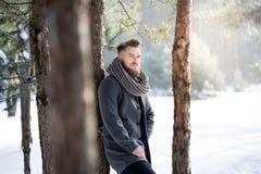 Vintermode i skog fotografering för bildbyråer