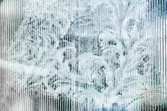 Vintermodell - rimfrost Royaltyfri Bild