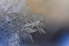 Vintermodeller av is på fönsterexponeringsglaset - makro Royaltyfria Foton