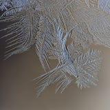 Vintermodeller av is på fönsterexponeringsglaset - makro Royaltyfri Bild