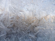 Vintermodeller från is Royaltyfria Foton