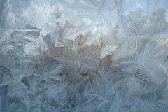 Vintermodeller från is Fotografering för Bildbyråer