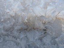 Vintermodeller från is Arkivbilder