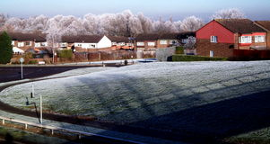 Vintermorgon Royaltyfria Bilder