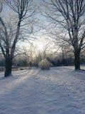 Vintermorgon efter nya den över natten snöavverkningen Arkivbild