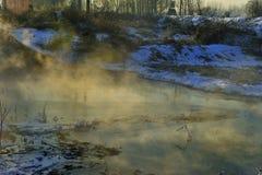 Vintermorgonen royaltyfri foto